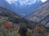 Cusco_Salkantay25